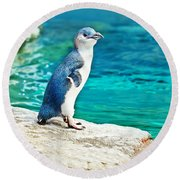 Blue Penguin Round Beach Towel