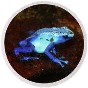 Blue Poison Dart Frog - Dendrobates Azureus Round Beach Towel