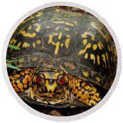 Blue Ridge Box Turtle Round Beach Towel
