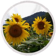 Blue Ridge Sunflowers  Round Beach Towel