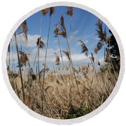 Blue Sky And Seaoats Round Beach Towel
