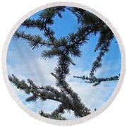 Blue Sky Art Prints White Clouds Conifer Pine Branches Baslee Troutman Round Beach Towel