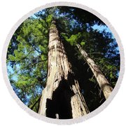Blue Sky Big Redwood Trees Forest Art Prints Baslee Troutman Round Beach Towel
