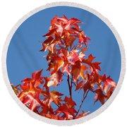 Blue Sky Fall Tree Leaves Landscape Art Prints Baslee Troutman Round Beach Towel