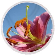 Blue Sky Florals Art Pink Calla Lily Blooming Baslee Troutman Round Beach Towel
