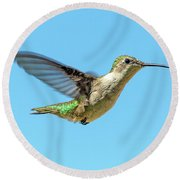 Blue Sky Hummingbird Round Beach Towel