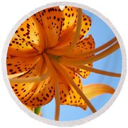 Blue Sky Sunshine Tiger Lily Flowers Giclee Prints Baslee Troutman Round Beach Towel