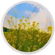 Blue Sky Yellow Flowers Round Beach Towel