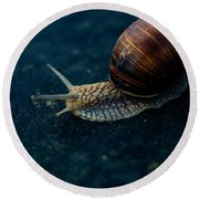 Blue Snail Round Beach Towel