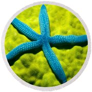 Blue Starfish On Poritirs Round Beach Towel