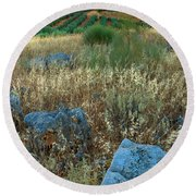 blue stones amongst the olive groves near Iznajar Andalucia Spain Round Beach Towel