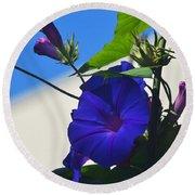 Blue Summer Flower Round Beach Towel
