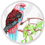 Blue Tail Parrot - Green Day Round Beach Towel