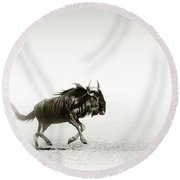 Blue Wildebeest In Desert Round Beach Towel