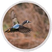 Blue Winged Teal Round Beach Towel