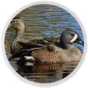 Blue Winged Teal Pair Round Beach Towel