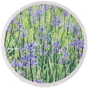 Bluebell Bluebells Flowers Blooming In Spring Round Beach Towel