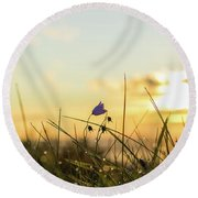 Bluebell In The Sunrise Round Beach Towel