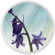 Bluebells 2 Round Beach Towel