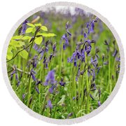 Bluebells In Judy Woods Round Beach Towel