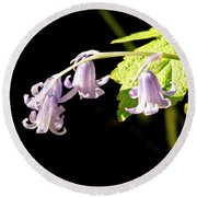 Bluebells Under The Sun Ray. Round Beach Towel