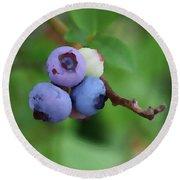 Blueberries On The Vine 3 Round Beach Towel
