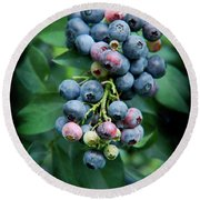 Blueberry Cluster Round Beach Towel