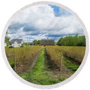 Blueberry Rows Round Beach Towel