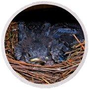 Bluebird Babies Dreaming Of Flight Round Beach Towel