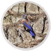 Bluebird On Canary Island Palm II Round Beach Towel