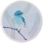 Bluebird Painting Round Beach Towel