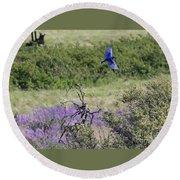 Bluebird Pair In Blickleton Round Beach Towel