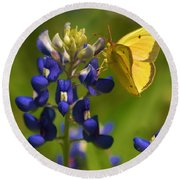Bluebonnet And Butterfly Round Beach Towel