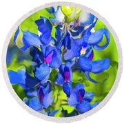 Bluebonnet Fantasy Round Beach Towel