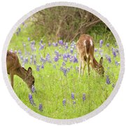 Bluebonnets And Whitetails Round Beach Towel