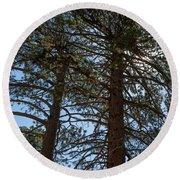 Bluff Lake Ca Through The Trees 3 Round Beach Towel