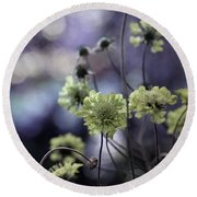 A Meadow's Blur Of Nature Round Beach Towel