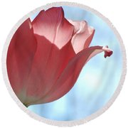 Blush Round Beach Towel