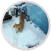 Bobcat On A Mountain Ledge Round Beach Towel