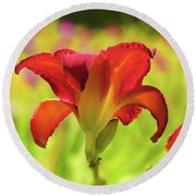 Bold Red Gold - Daylily Round Beach Towel