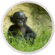 Bonobo Tyke Round Beach Towel