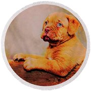 Bordeaux Mastiff Pup Round Beach Towel