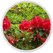 Botanical Garden Art Prints Red Rhodies Trees Baslee Troutman Round Beach Towel