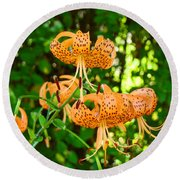 Botanical Master Gardens Art Prints Orange Tiger Lilies Baslee Troutman Round Beach Towel