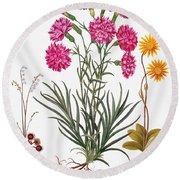 Botany: Flowers, 1613 Round Beach Towel
