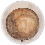 Botany: Mammee, 1585 Round Beach Towel