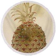Botany: Pineapple, 1585 Round Beach Towel
