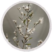 Botswana Wildflower  Round Beach Towel