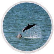 Bottlenose Dolphins In The Ocean Round Beach Towel