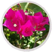 Bougainvillea Boogey Round Beach Towel